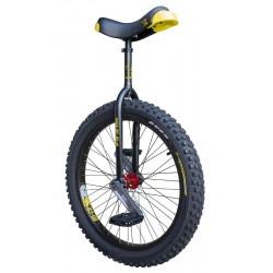 "Monociclo Muni 24"" ISIS..."